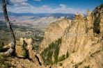 Yellowstone Vista